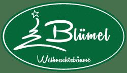 Weihnachtsbäume, Schnittgrün, Weihnachtsmarkt
